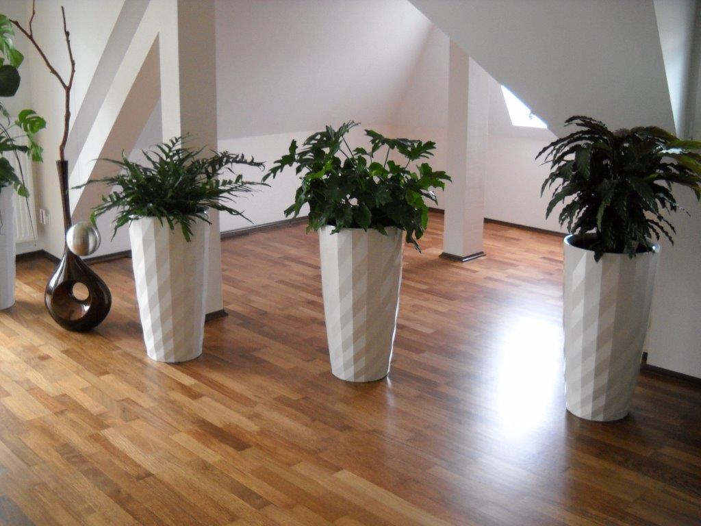 Referenzen Parkett, Holzfußböden, Dielen, Bodenbeläge - Parkett ...
